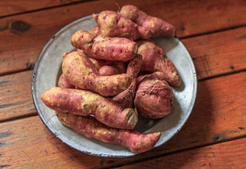 Las batatas ofrecen un alto contenido de almidón y fibras