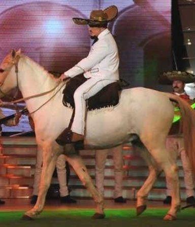 Escupidas, caídas, piñas y hasta el caballo de Ricky Fort: los momentos más bizarros de Showmatch