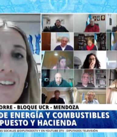 Diputados, en vivo: debate por el proyecto de ley de zonas frías
