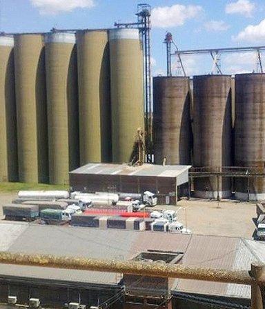 Molino Cañuelas, principal productor de harina, se presentó en concurso preventivo de acreedores