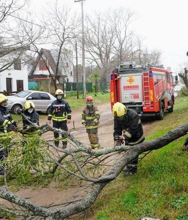 Fuertes imágenes: un terrible temporal hizo caer árboles y voló techos en la Costa Atlántica