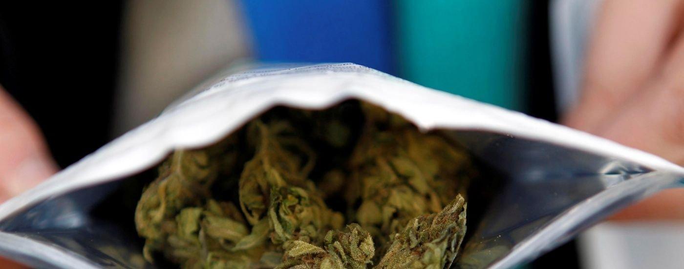 BigBang en Montevideo: cómo es comprar y consumir marihuana legal en Uruguay