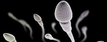 Anticonceptivo en gel para hombres: en qué consiste, dónde se aplica y todo lo que tenés que saber